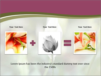 White Lily PowerPoint Template - Slide 22