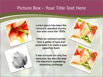 White Lily PowerPoint Template - Slide 24