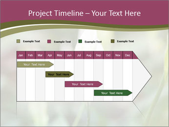 White Lily PowerPoint Template - Slide 25