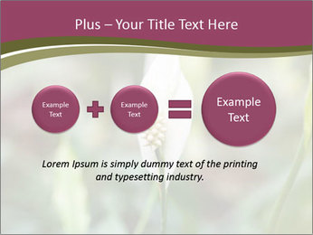 White Lily PowerPoint Template - Slide 75