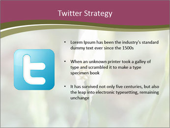 White Lily PowerPoint Template - Slide 9