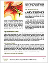 0000089078 Word Template - Page 4