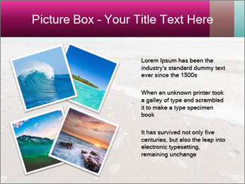 Empty Beach PowerPoint Template - Slide 23