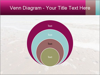 Empty Beach PowerPoint Template - Slide 34