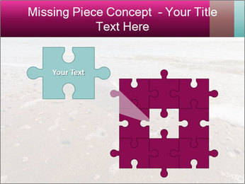 Empty Beach PowerPoint Template - Slide 45