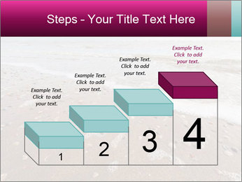 Empty Beach PowerPoint Template - Slide 64