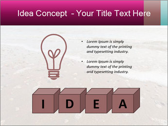 Empty Beach PowerPoint Template - Slide 80