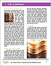 0000089094 Word Template - Page 3