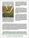0000089096 Word Templates - Page 4