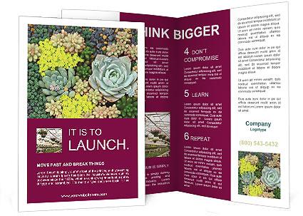 0000089098 Brochure Template