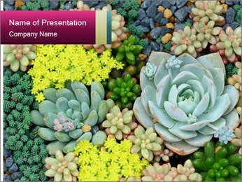 Botanical Composition PowerPoint Template - Slide 1