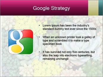 Botanical Composition PowerPoint Templates - Slide 10