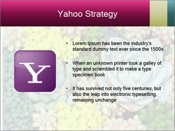 Botanical Composition PowerPoint Template - Slide 11