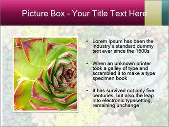Botanical Composition PowerPoint Templates - Slide 13