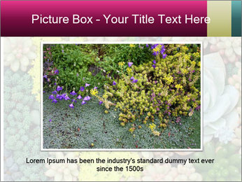 Botanical Composition PowerPoint Template - Slide 15