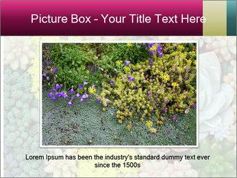 Botanical Composition PowerPoint Templates - Slide 15