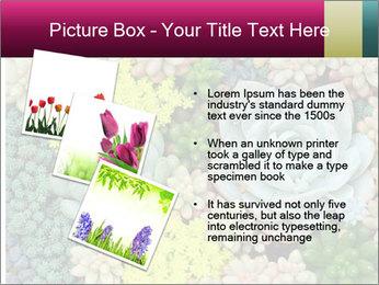Botanical Composition PowerPoint Templates - Slide 17