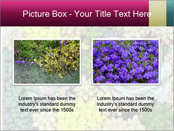 Botanical Composition PowerPoint Template - Slide 18