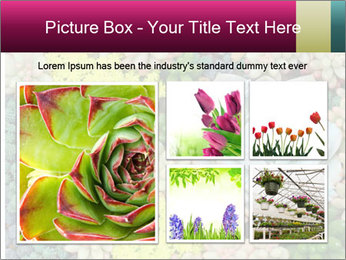 Botanical Composition PowerPoint Template - Slide 19