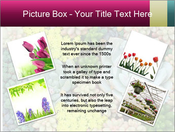 Botanical Composition PowerPoint Template - Slide 24