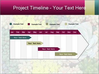 Botanical Composition PowerPoint Templates - Slide 25