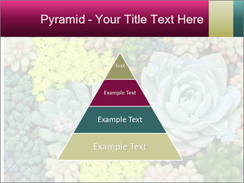 Botanical Composition PowerPoint Template - Slide 30