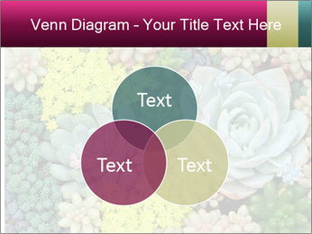Botanical Composition PowerPoint Template - Slide 33
