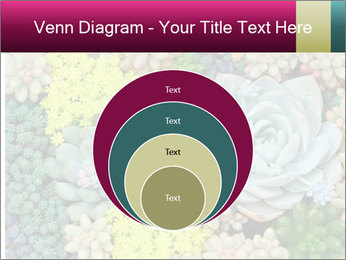 Botanical Composition PowerPoint Template - Slide 34