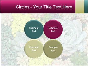 Botanical Composition PowerPoint Templates - Slide 38