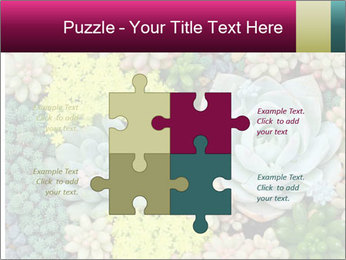 Botanical Composition PowerPoint Templates - Slide 43