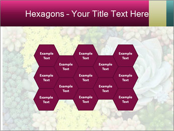 Botanical Composition PowerPoint Template - Slide 44
