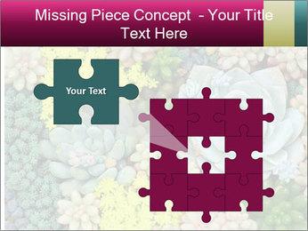 Botanical Composition PowerPoint Templates - Slide 45