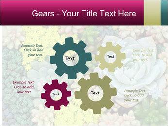 Botanical Composition PowerPoint Templates - Slide 47