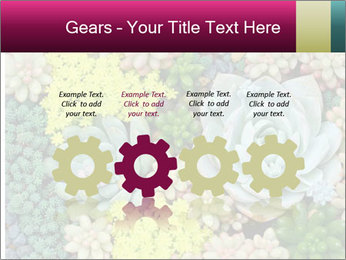 Botanical Composition PowerPoint Templates - Slide 48