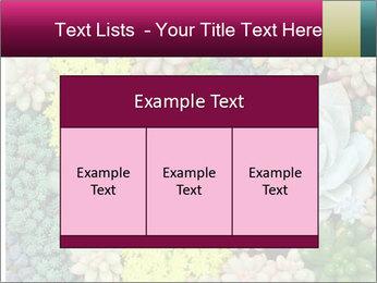 Botanical Composition PowerPoint Templates - Slide 59