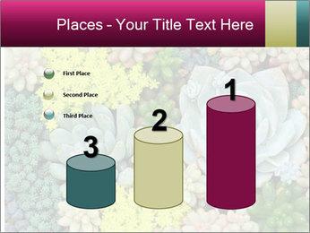 Botanical Composition PowerPoint Templates - Slide 65