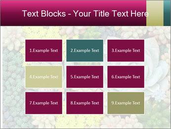 Botanical Composition PowerPoint Templates - Slide 68