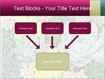 Botanical Composition PowerPoint Templates - Slide 70