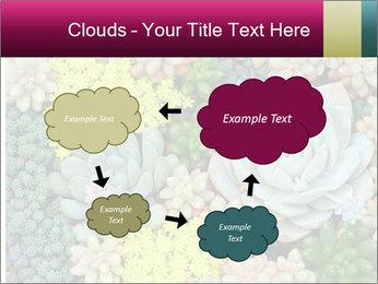 Botanical Composition PowerPoint Templates - Slide 72