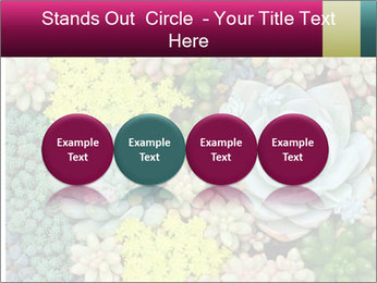 Botanical Composition PowerPoint Template - Slide 76