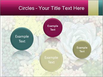 Botanical Composition PowerPoint Templates - Slide 77