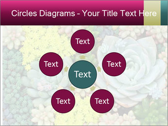 Botanical Composition PowerPoint Template - Slide 78