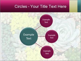 Botanical Composition PowerPoint Templates - Slide 79