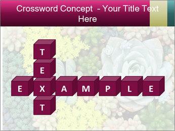 Botanical Composition PowerPoint Templates - Slide 82