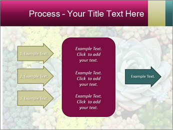 Botanical Composition PowerPoint Template - Slide 85