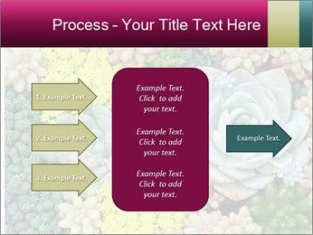 Botanical Composition PowerPoint Templates - Slide 85
