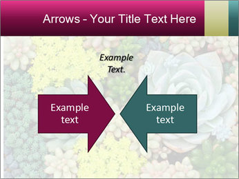 Botanical Composition PowerPoint Template - Slide 90