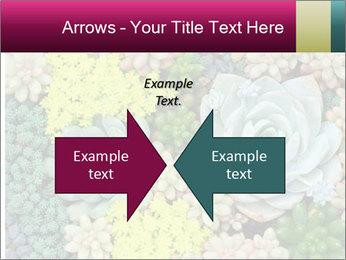 Botanical Composition PowerPoint Templates - Slide 90