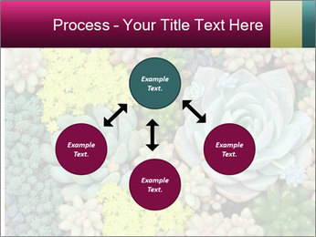 Botanical Composition PowerPoint Template - Slide 91