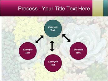 Botanical Composition PowerPoint Templates - Slide 91